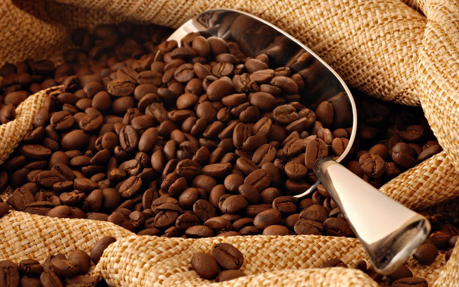 آنچه که باید در مورد قهوه بدانیم؟-درست مصرف کنیم - آموزش همگانی - آگاهی مصرف