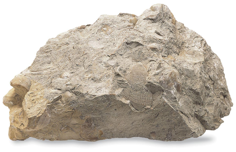 منابع انرژی از سنگهای رسوبی- پایگاه اینترنتی دانستنی در ایران