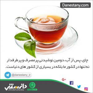 چای- پایگاه اینترنتی دانستنی در ایران