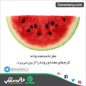 هندوانه - پایگاه اینترنتی دانستنی در ایران