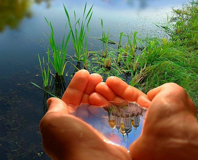 مسئولیت انسان در رابطه با محیط زیست پاک - پایگاه اینترنتی دانستنی ایران