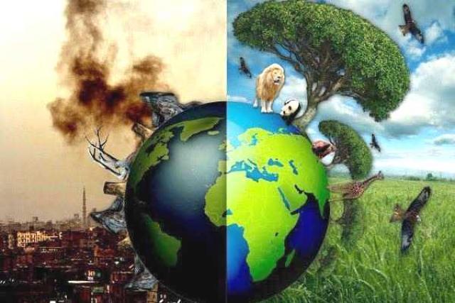 عوامل تخریب محیط زیست و اقدامات دولت برای پیشگیری + اینفوگرافیک-- پایگاه دانستنی آنلاین