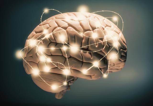 دانستنی هایی در باره مغز از ابتدا تا پایان+اینفوگرافیک- پایگاه دانستنی آنلاین