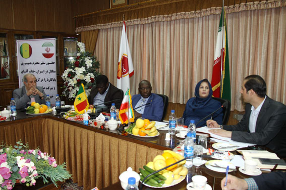 سفیر جمهوری سنگال از گروه صنعتی مینو بازدید کرد