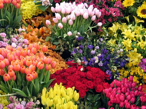 آیا میدانید رنگ گلهایی که هدیه میدهید نشانه چیست؟