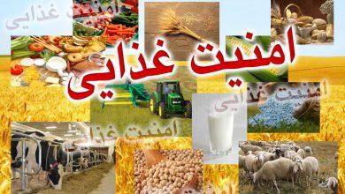نقش و اهميت استانداردها در صنايع غذايي