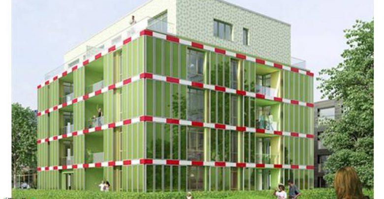 چگونه می توان با جلبک انرژی ساختمان را تأمین کرد ؟