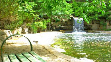 باغ گیاه شناسی ملی ایران را بیشتر بشناسیم