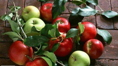 اگر قلبتان شکسته است سیب بخورید