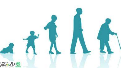 دانستنیهای جالب درباره طول عمر انسان