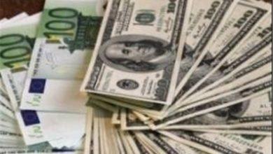 دو گزینه بانک مرکزی برای جایگزینی خرید دلار