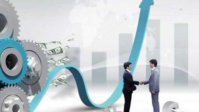 توسعه کسب و کارهای نوپا منوط به ایجاد اکوسیستم رشد