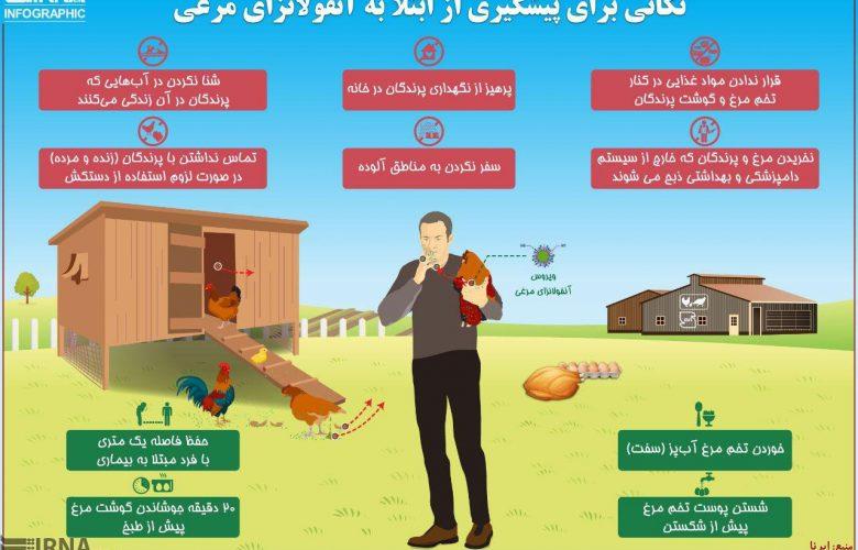 نکاتی برای پیشگیری از ابتلا به آنفولانزای مرغی +اینفوگرافی