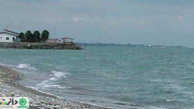 انتقال آب دریای خزر ، به حیات گونه های در معرض خطر پایان می دهد