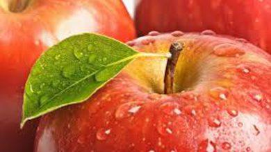 خواص غذایی و درمانی سیب +ویدئو