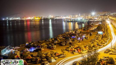 جاذبه های گردشگری قشم، دلفین خلیجفارس
