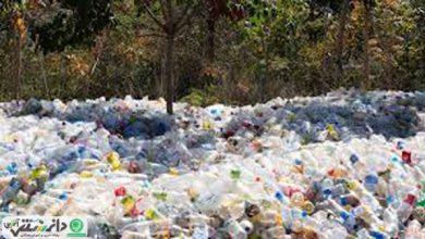 نابودی زبالههای پلاستیکی با تقویت یک آنزیم طبیعی
