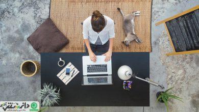 سئو چیست و چرا فروشگاههای آنلاین به آن نیاز دارند ؟