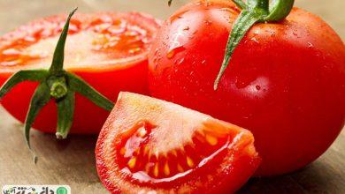 دانه های گوجه فرنگی، جایگزین قرص آسپرین