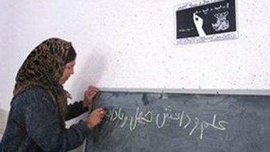 نگاهی به وضعیت سواد در ایران +اینفوگرافیک
