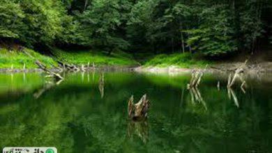 تصاویر زیبای هوایی از دریاچه چورت +ویدئو