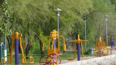 شیوه استفاده درست از دستگاه های بدنسازی پارکها +اینفوگرافیک