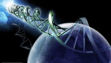 پدرعلم ژنتیک ایران : ایران در صف مقدم علم ژنتیک دنیا قرار دارد