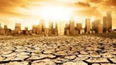 راهکار حل «بحران آب» پذیرش کمآبی ایران است