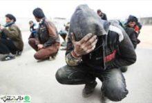 جمع آوری 38 معتاد متجاهر در شهرستان قدس