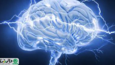 گلوکز، عاملی برای تقویت حافظه در زمان پیری