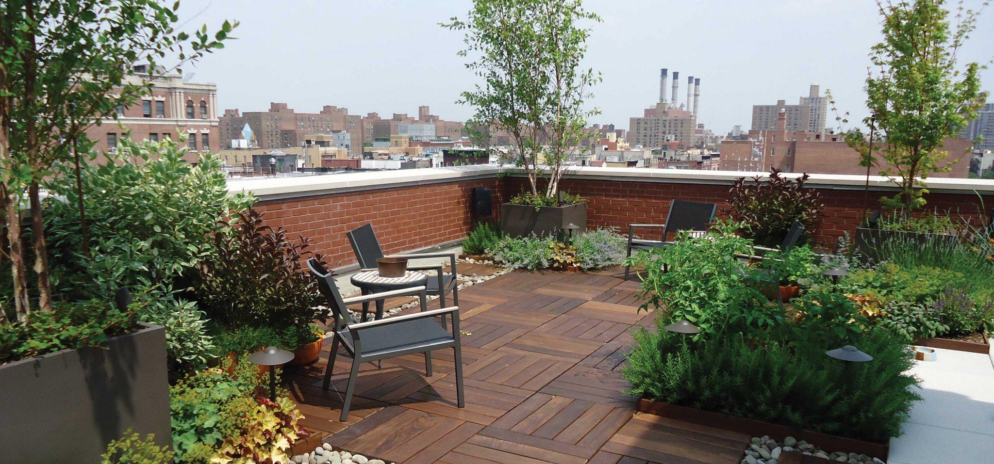 «بام باغ» فضای سبزی همیشه در دسترس-درست مصرف کنیم - آموزش همگانی - آگاهی مصرف