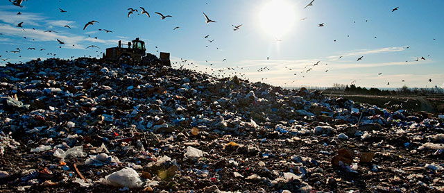 در مورد زباله ها بیش تر بدانیم - پایگاه اینترنتی دانستنی ایران