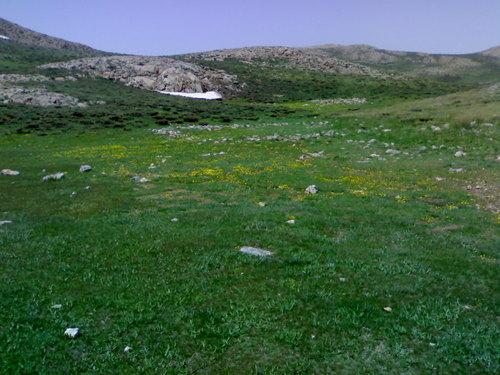 یکصد جاذبه دیدنی ایران (37) پارک ملی تنگ صیاد- پایگاه اینترنتی دانستنی ایران