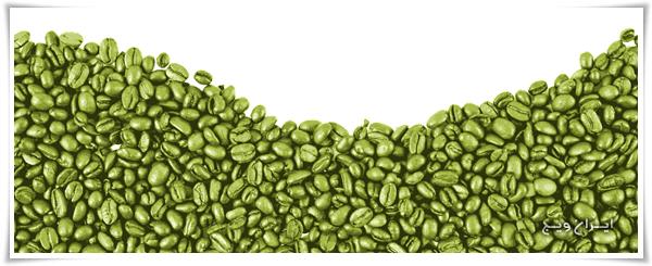 آیا می توان با قهوه سبز لاغر شد ؟- پایگاه اینترنتی دانستنی ایران