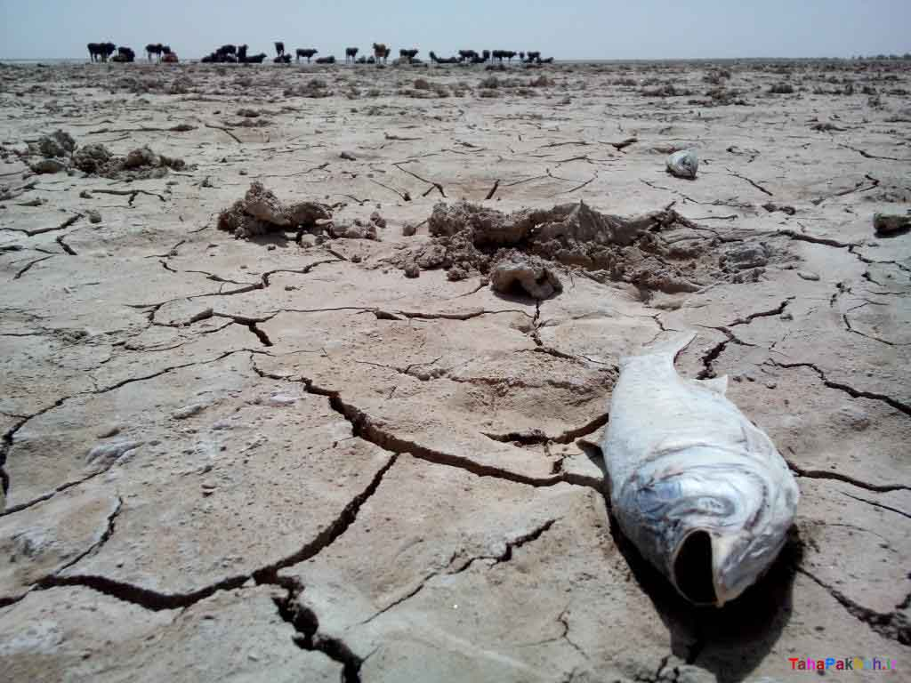 بحران آب در ایران و راهکارهای پیشگیری از آن- پایگاه اینترنتی دانستنی ایران