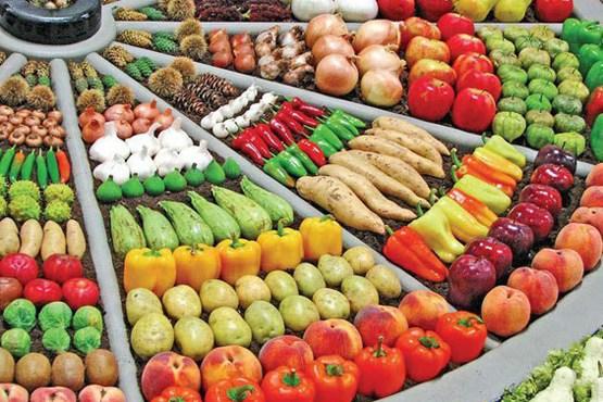 مواد غذایی مفید برای تقویت چشم و بینایی (2)- پایگاه اینترنتی دانستنی آنلاین ایران