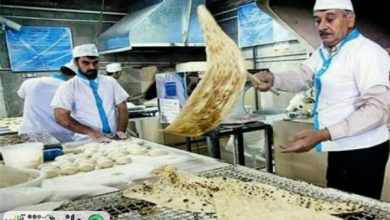 بررسی مجدد قیمت نان/ نانواییها قیمتها را افزایش ندهند