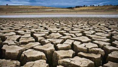 اگر آب و غذای زمین تمام شود، چه اتفاقی می افتد؟ + موشن گرافی