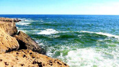 سواحل مکران، سواحل کالیفرنیایی در جنوب ایران