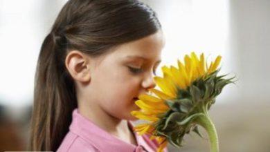 چه عواملی حس بویایی ما را از بین میبرند ؟