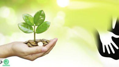 اهمیت نظارت بر مؤسسات خیریه