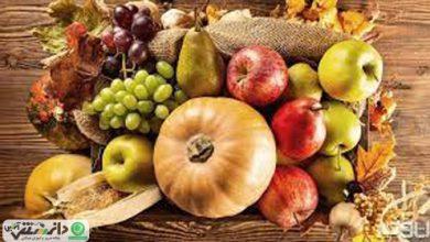 ۴ میوه ای که ویتامین ث آنها چند برابر مرکبات است !