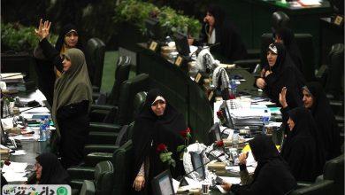 سلحشوری: طرح اختصاص سهمیه ورود زنان به مجلس در حال تدوین است