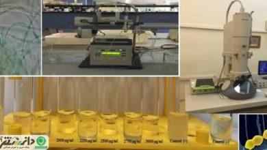 نانوداروی جایگزین آنتیبیوتیک تولید شد