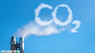 انتشار این گاز، مواد مغذی در گیاهان را نابود میکند