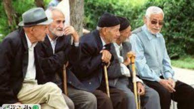 آمار وضعیت سالمندی در ایران و جهان + اینفوگرافی