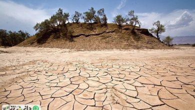 وضعیت خشکسالی در ایران در یک نمای کلی +اینفوگرافی