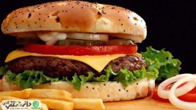 همبرگر خانگی و آموزش تهیه همبرگر در خانه +ویدئو