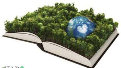 نقش رسانهها در حفظ منابع طبیعی و محیط زیست